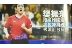 樊振东接发球+冲斜线+极限近台乒乓球技术图解