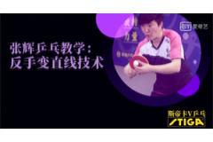 斯蒂卡乒乓课堂:反手变直线技术视频教学